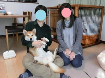 成犬オス:No.1932 モモタ 正式譲渡1-2.jpg