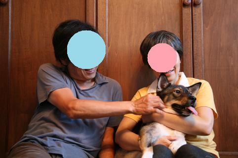 正式譲渡 成犬オス No.2212 ポコタ - コピー.JPG